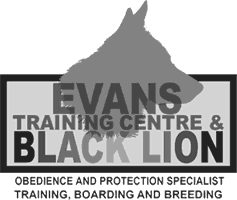 Black Lion Canine Obedience Training and Kennels