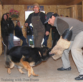 Off-leash training with Don Evans